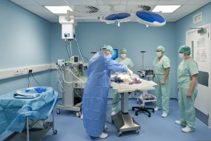 Operating Theatre in vets Practice