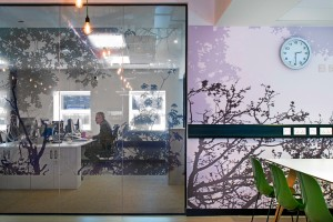 Window graphics in an office